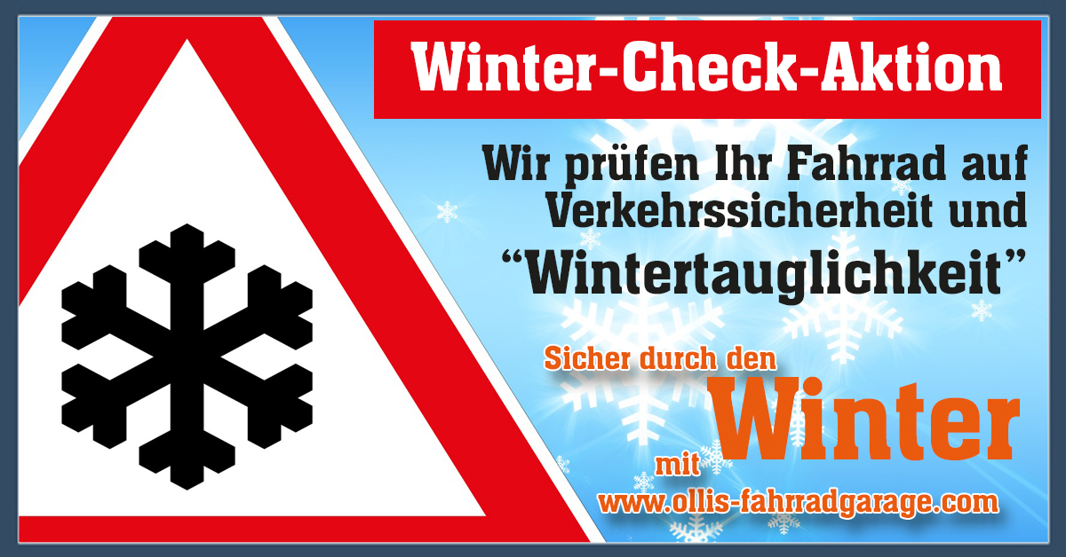 Aktion Winter Check 2019